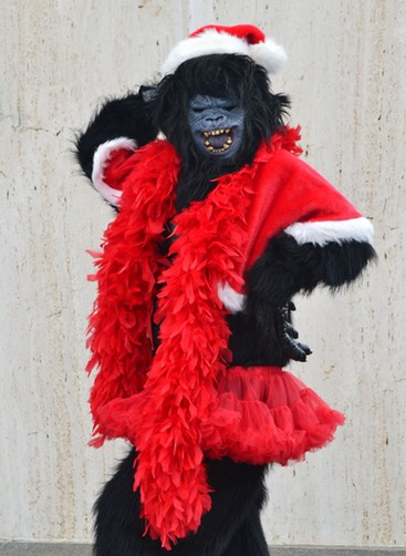 Gorilla Santa 2 for website
